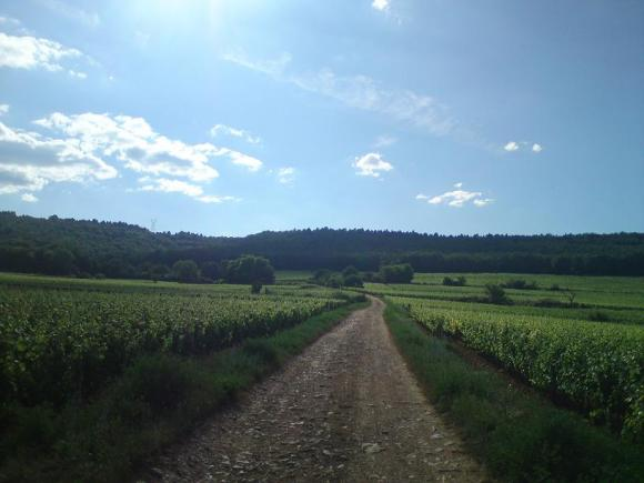 http://ephemeride.cowblog.fr/images/DSC00079.jpg
