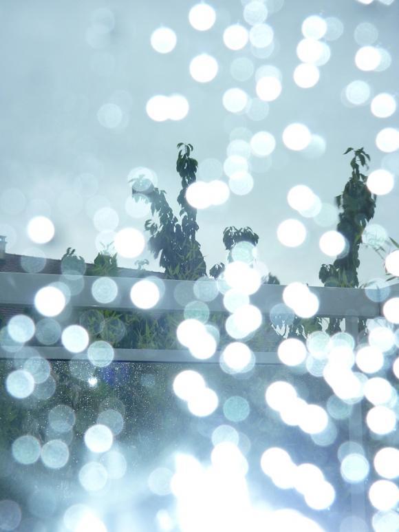 http://ephemeride.cowblog.fr/images/P1010288.jpg